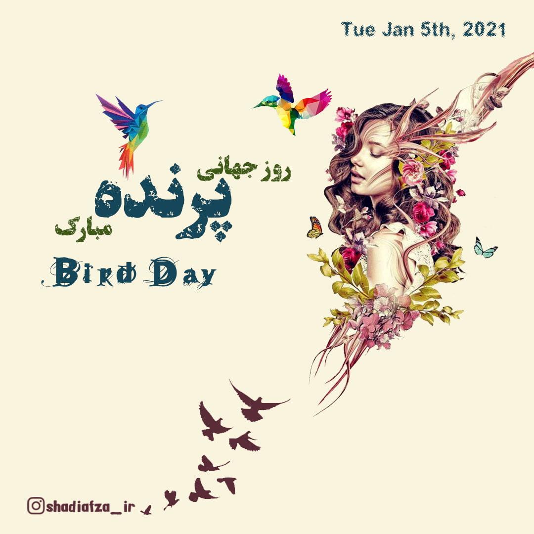 روز جهانی پرنده مبارک