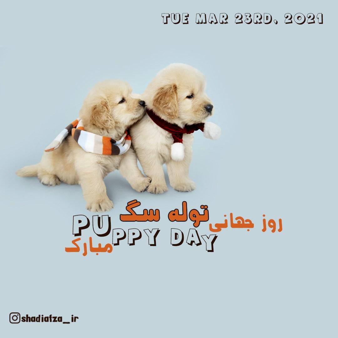 روز جهانی توله سگ