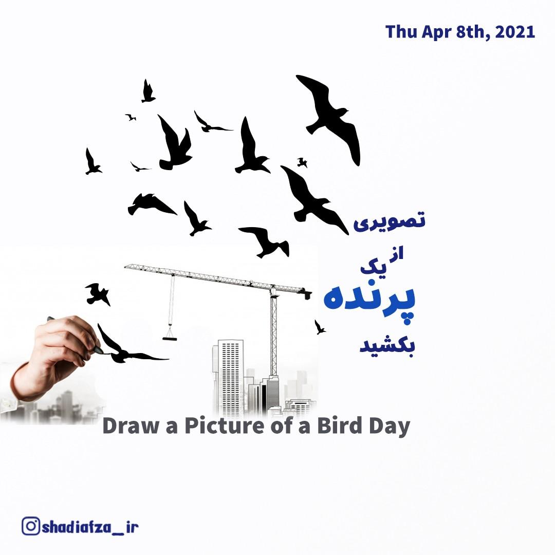 تصویری از یک پرنده بکشید