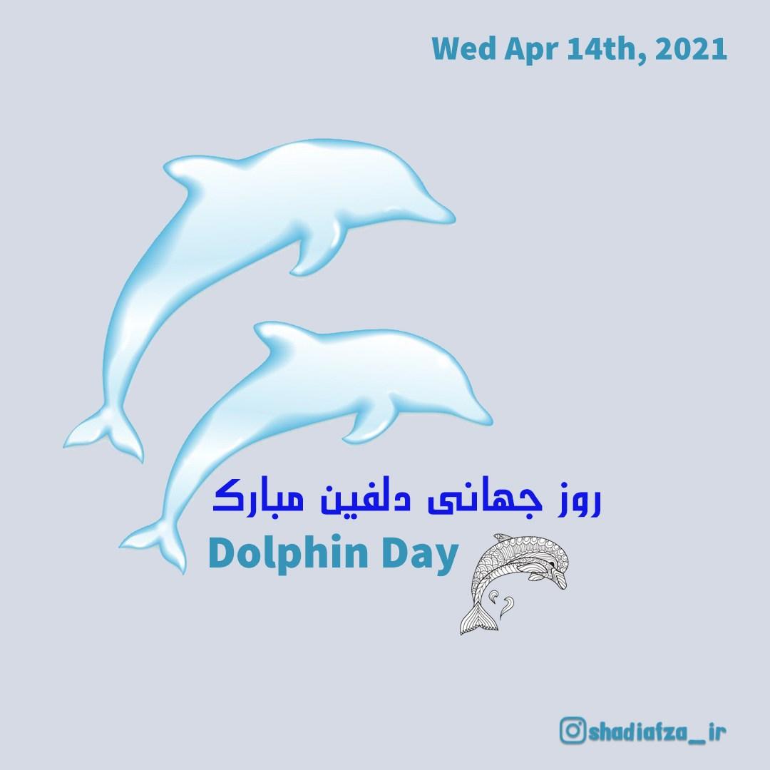 روز جهانی دلفین مبارک